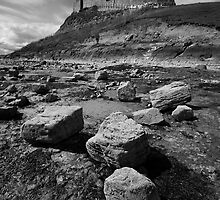 Lindisfarne Castle from The Beach by Ritchie Coatsworth