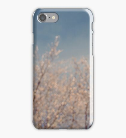 Cold February Mornings iPhone Case/Skin