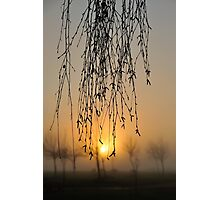 early morning curtain #2 Photographic Print