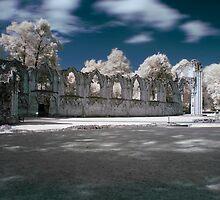 Museum Gardens x by Arthur Indrikovs