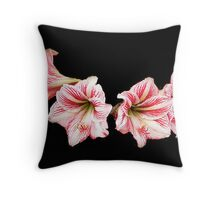 Peppermint Daylilies Throw Pillow