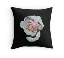 French Lace #2 Throw Pillow