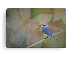 Bluebird Fantasy Canvas Print