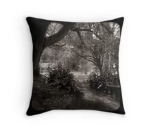 The Path through the viewfinder Throw Pillow