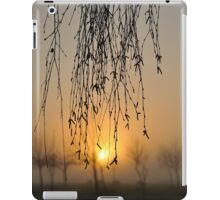 early morning curtain #2 iPad Case/Skin