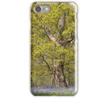 Hillhouse bluebells iPhone Case/Skin