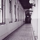 in the halls by Karen E Camilleri
