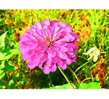 Hyper Color Photographic Print