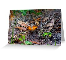 Butterfly in the Woods Greeting Card