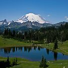Mt. Rainier and Tipsoo Lake (Mt. Rainier National Park) by Barb White