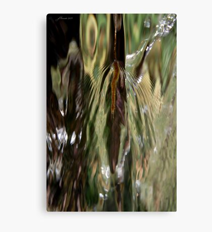 Dances with Water Canvas Print