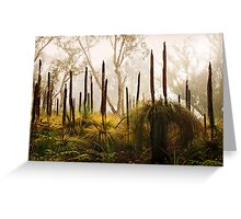Late Autumn Grass Tree's, Great Ocean Road. Greeting Card