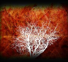 Autumn Inverted. by Lynne Haselden