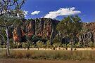 Windjana Gorge by Leanne Robson