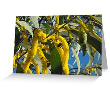 Wattle a Bee be  Greeting Card