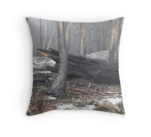 The scarred landscape Throw Pillow