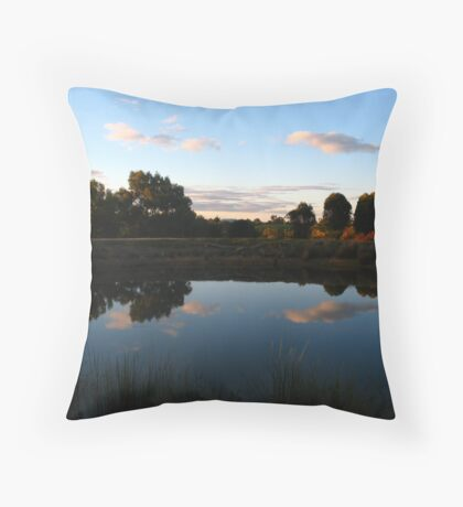 Mirror Dam Throw Pillow