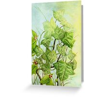 Ivy leaves on the vine Greeting Card