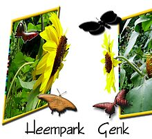 Heempark  Genk   (Belgium) by alaskaman53