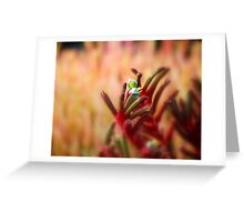 Glowing in the Warmth: Greeting Card