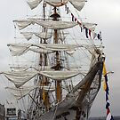 Barque Gloria by fsmitchellphoto