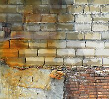 Rusty Bricks by joan warburton