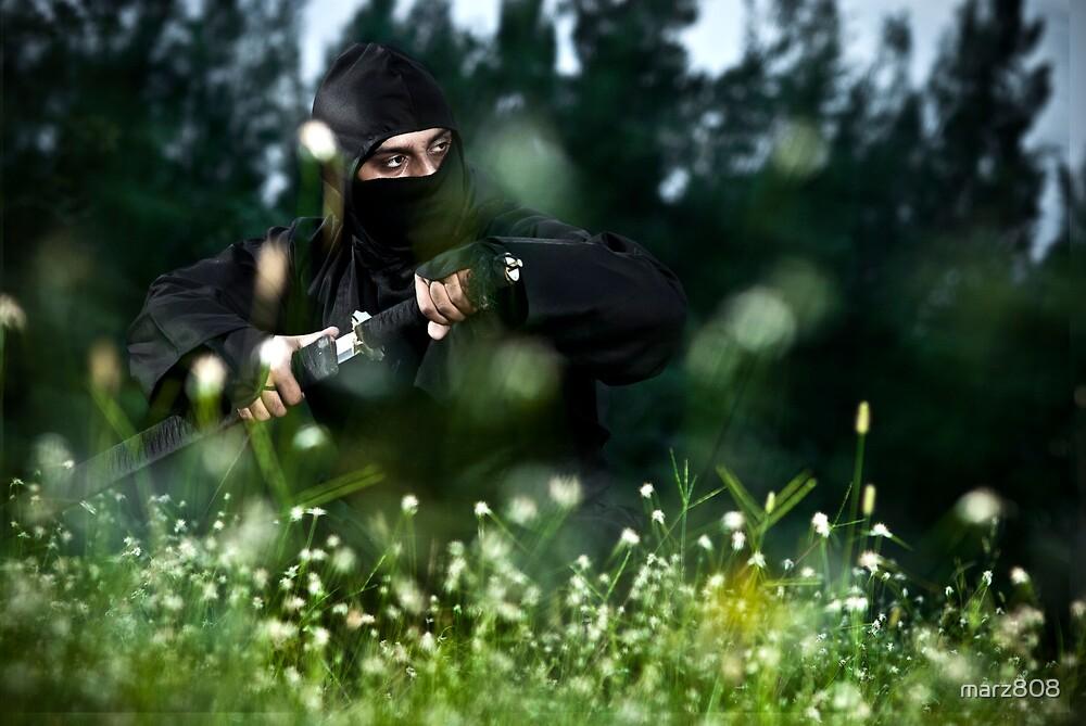 Ninja in Grassy Nole by marz808