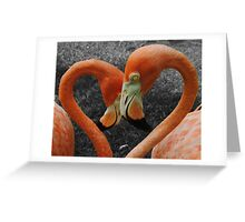 Flamingo Heart Greeting Card