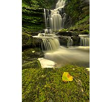 Scaleber Force Photographic Print