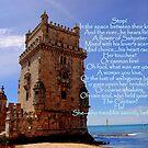 Torre de Belém, Lisbon, Portugal  by Wayne Cook