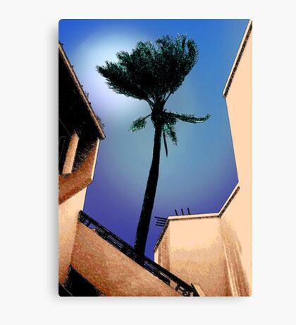Tarpon Tree Canvas Print