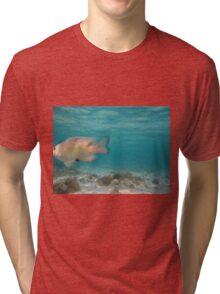 white fish Tri-blend T-Shirt