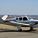 Beechcraft Bonanza V-Tail by RatManDude