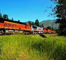 4 BNSF Locomotives  by Borror