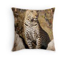 King of the Castle - Okavango Delta, Botswana Throw Pillow
