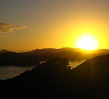 Sunrise in New Zealand by chwells