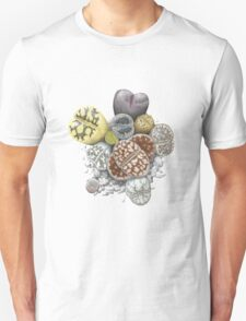 Lithops Cluster (No Labels) T-Shirt