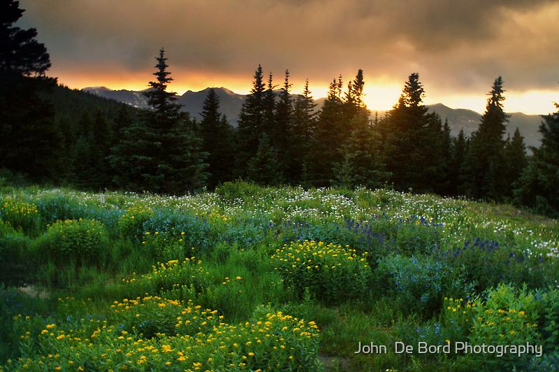A Wildflower Sunset by John  De Bord Photography