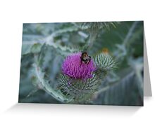 Bee.... me up Scotty ! Greeting Card