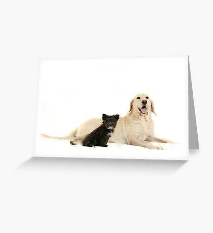 Abby & Smokey Greeting Card