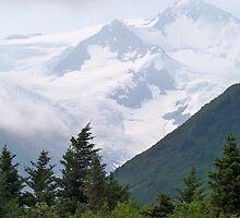 Chugach National Forest by Dandelion Dilluvio