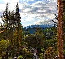 Treehouse View At Oswaldo's by Al Bourassa