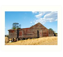 Old Red Shearing Shed Art Print