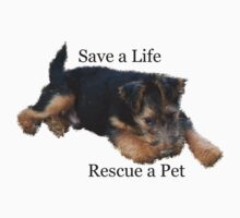 Save a Life - Rescue a Pet by Tucker The Dog