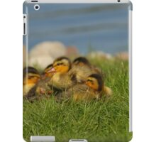 Ducklings in the Grass iPad Case/Skin