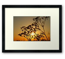Sunset from Burton on the Wolds Framed Print