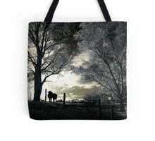 Silly Old Moo Tote Bag