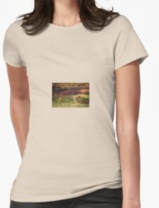 Old Stone Barn in Autumn Womens Fitted T-Shirt