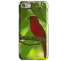Perfectly perched iPhone Case/Skin