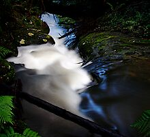Head waters, Triplet Falls, The Otways by Paul Moore